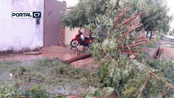 VÍDEO: Chuva de granizo e ventania causam destruição em Castelo do Piauí