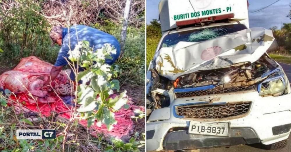 Ambulância colide com animal em entrada de cidade do Piauí